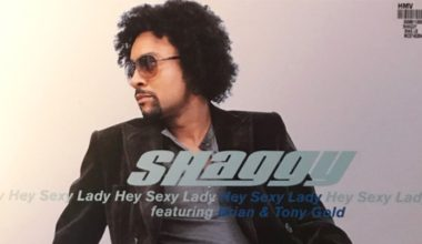 Shaggy Hey Sexy Lady ft Brian Tony Gold